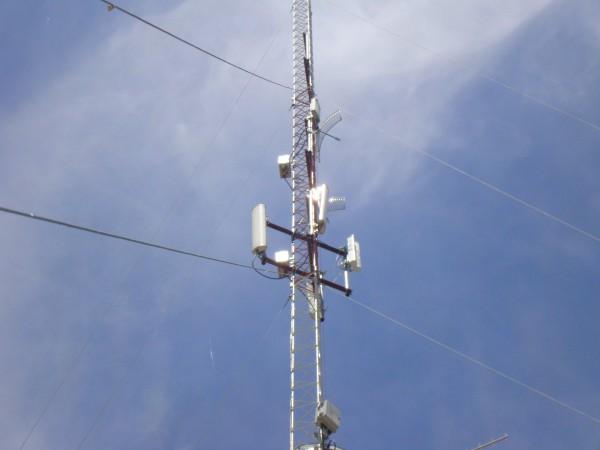 DSC03616-600x450.jpg