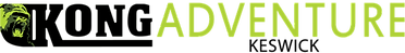 KongAdventure Logo.png