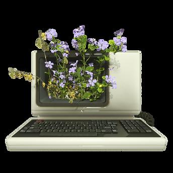 BotanicaComputer0044.png