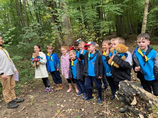 Beaver Activity Day - Teddy Bears Picnic