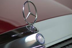 W124 Details-14