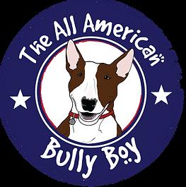Bully Boy White Circle Dozer USA Collar.