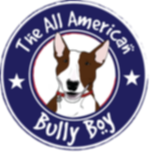 Bully Boy White Circle Dozer USA Collar.