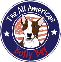 All American Bully Boy Pet Products Logo - Awesome Dog Treats