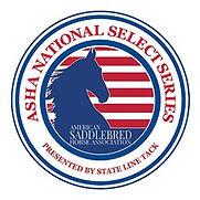 asha_nationalselectseries_logo_final.jpg