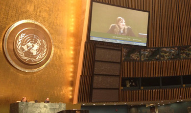 Summit Co-Chair, Youth Summit at the United Nations