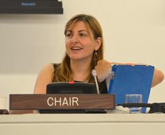 6 Summit Co-Chair at UN