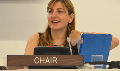 Summit Co-Chair, Youth Assembly at the United Nations