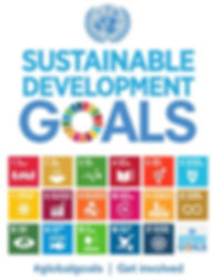 Aligning investment goals with the UN SDGs - partnerships for improved ESG and SRI returns