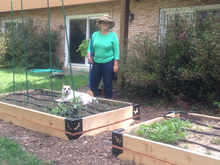 Vegetable Gardening for Earth Renewal