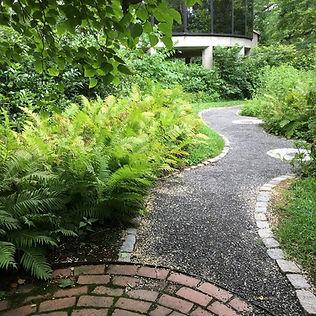Brandywine museum ferns.JPG