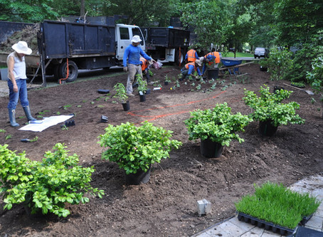 Gardening and landscaping made easy