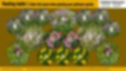Pollinator cards back.jpg