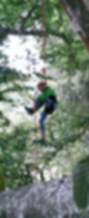 grimpe d'arbre accrobranche l'arbre a truc morvan activite settons sport panneciere lac