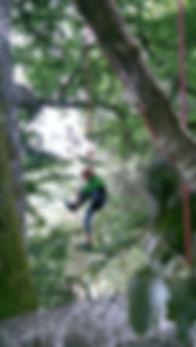l'arbre à truc grimpe à saint brisson maison du parc du morvan