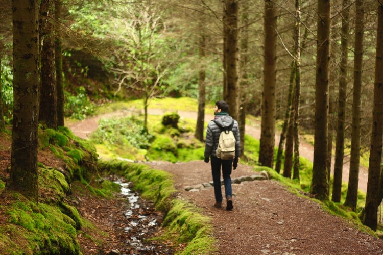 Wanderer hiking man.jpeg