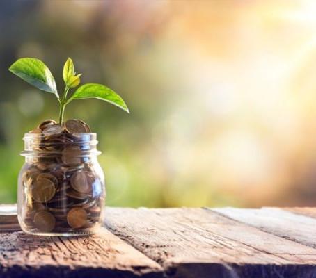 Pagamento por Serviços Ambientais: publicada Portaria MMA nº 288/2020