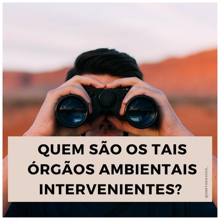 QUEM SÃO OS TAIS ÓRGÃOS AMBIENTAIS INTERVENIENTES?