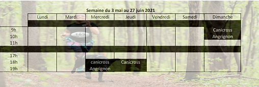 calendrier mai -juin 2021.PNG