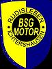 bsgmotor_web.png