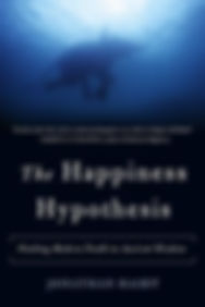 The_Happiness_Hypothesis.jpg