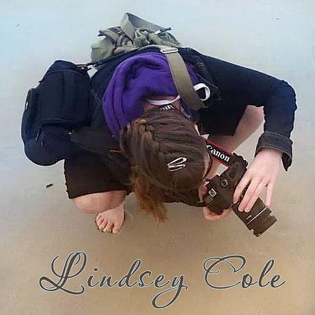 Artist: Lindsey Cole