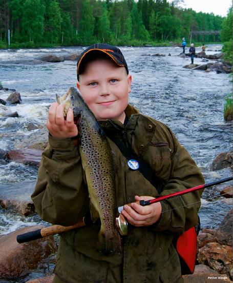芬兰的大自然日