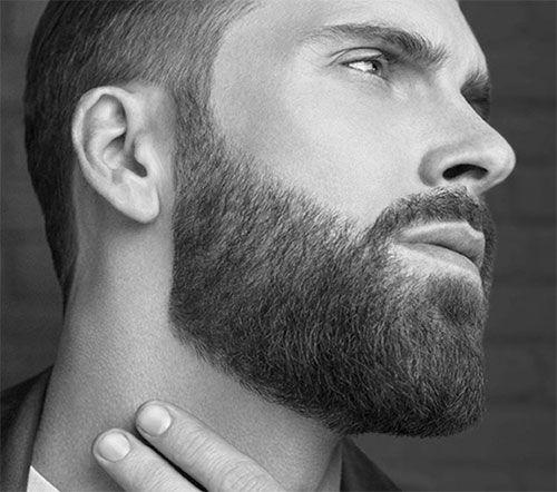 Taille de barbe 20€