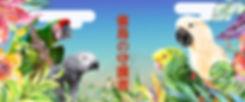 雀鳥の守護者 Banner.001.jpeg