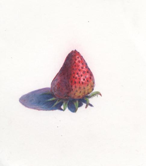 Strawberry, prismacolor.
