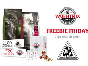 JANUARY FREEBIE FRIDAY COMPETITION