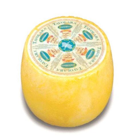 sardischer Pecorino (ca. 2 Monate gereift)