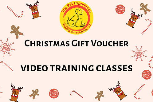 Gift Voucher - 3 x Video Training Classes - Multibuy Discount