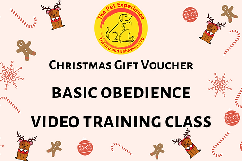 Gift Voucher - Basic Obedience - Video Training Class
