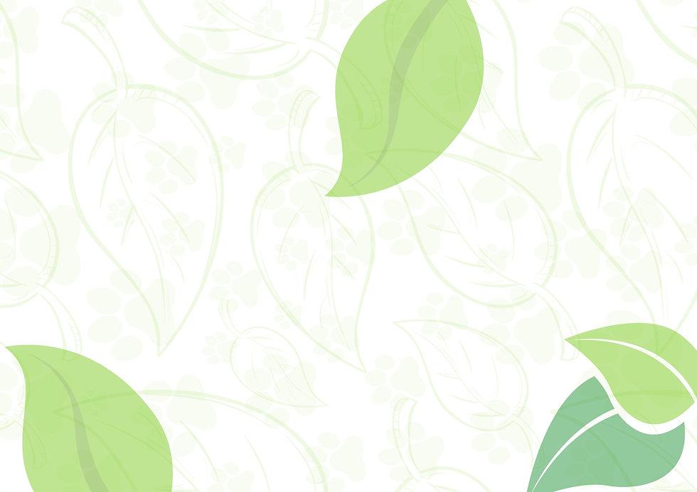 Take a look at my Canva design!_edited.jpg