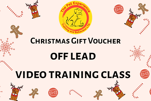 Gift Voucher - Off Lead - Video Training Class