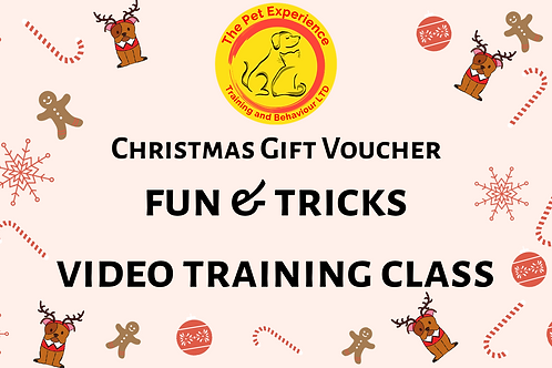 Gift Voucher - Fun & Tricks - Video Training Class