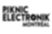 Logo PNE.png