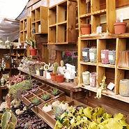 garden store (640x640).jpg