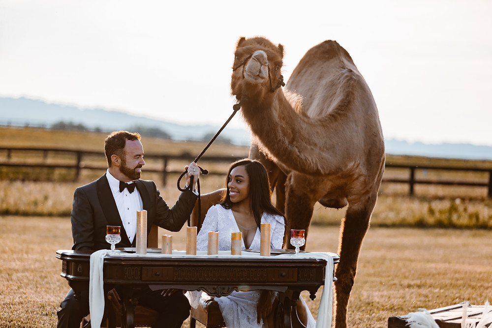 Destination Boho Intimate Wedding