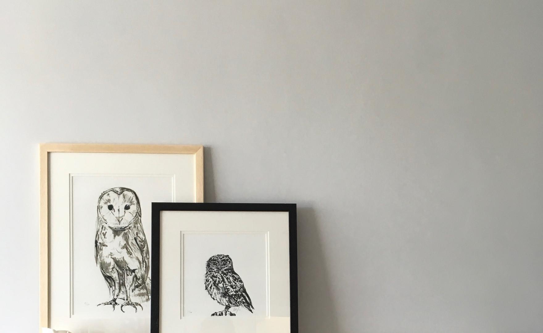 Little Owl & Barn Owl on the Mantelpiece