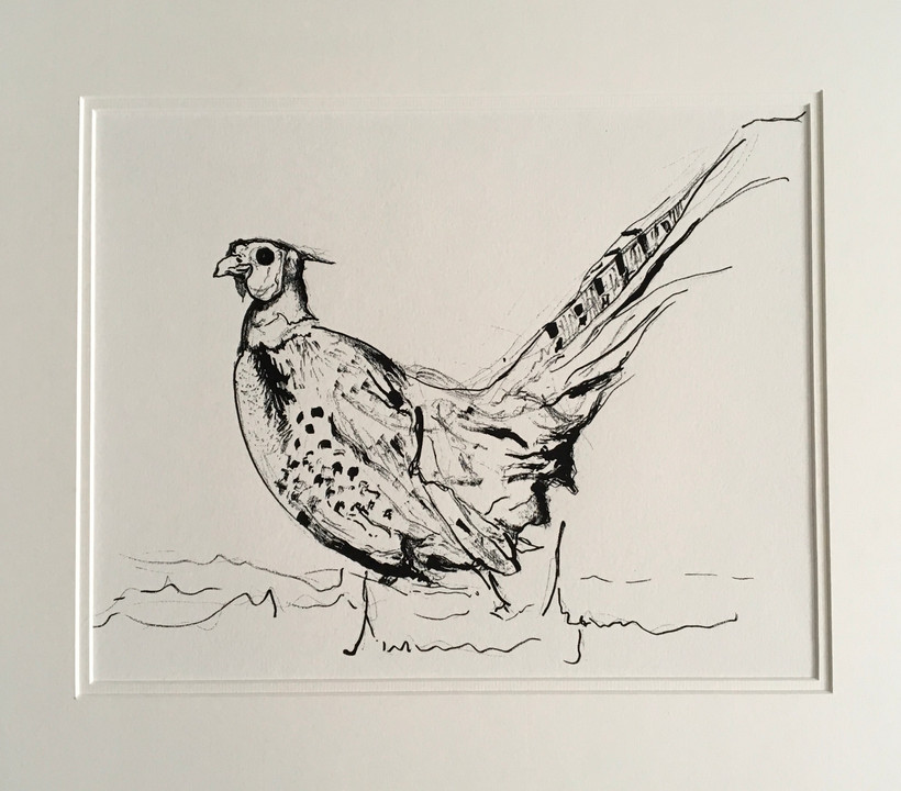 Pheasant I