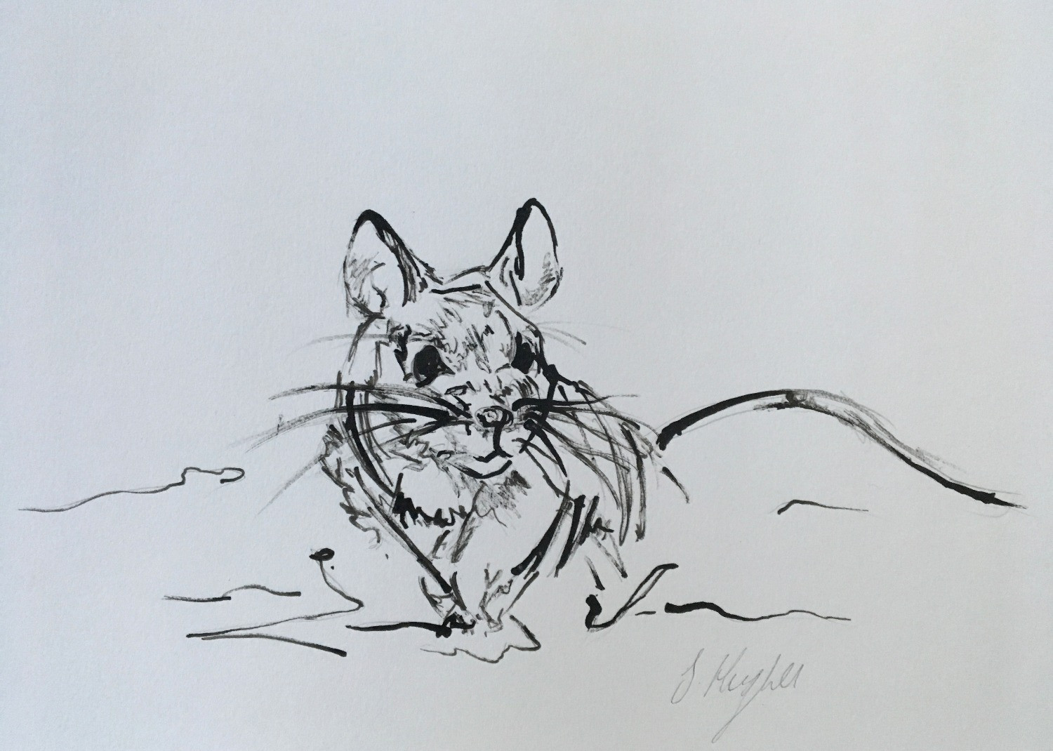 Running Mouse
