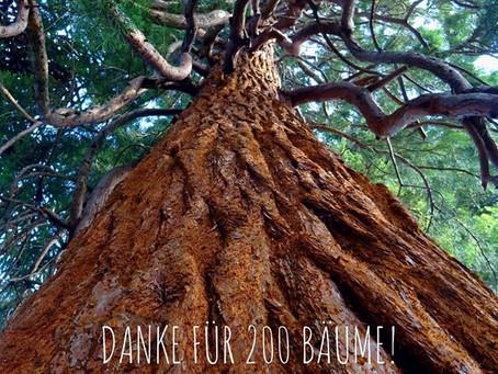 Danke für 200 Regenwaldbäume