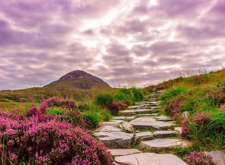 Blarney Castle, Killarney, Dublin.....