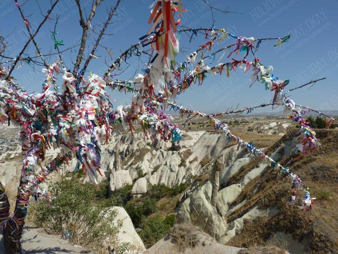 Mein (der) Wunschbaum in Kappadokien