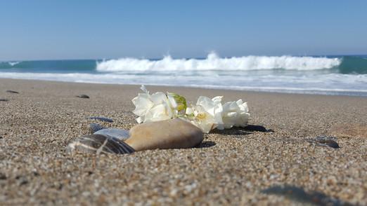 Strand Impressionen
