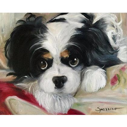 PRINT Cavalier King Charles Spaniel Dog
