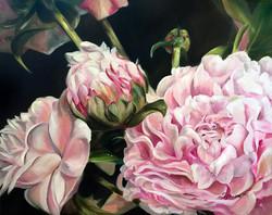 Splendor in Pink II