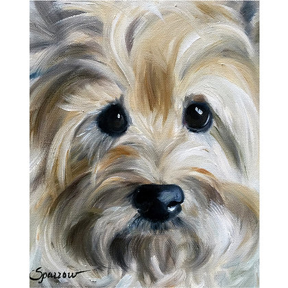 PRINT Cairn Terrier Dog